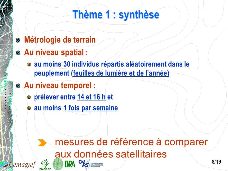8/19 Thème 1 : synthèse Métrologie de terrain Au niveau spatial : au moins 30 individus répartis aléatoirement dans le peuplement (feuilles de lumière