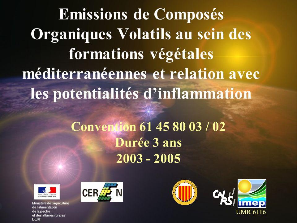 Intérêt des COVB Pollution atmosphérique Polluants secondaires (O 3, particules, aérosols) Réchauffement climatique Incendies de forêts Concentration importante dans latmosphère en période de sécheresse (Hypothèse de lexistence de nappes de COVB) Apparition et propagation des feux