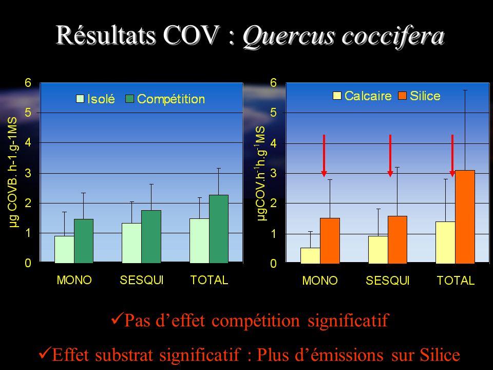 Pas deffet compétition significatif Effet substrat significatif : Plus démissions sur Silice Résultats COV : Quercus coccifera