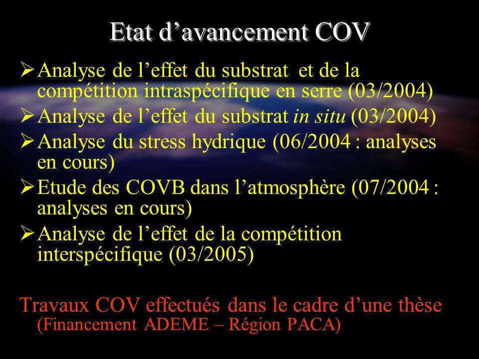 Etat davancement COV Analyse de leffet du substrat et de la compétition intraspécifique en serre (03/2004) Analyse de leffet du substrat in situ (03/2
