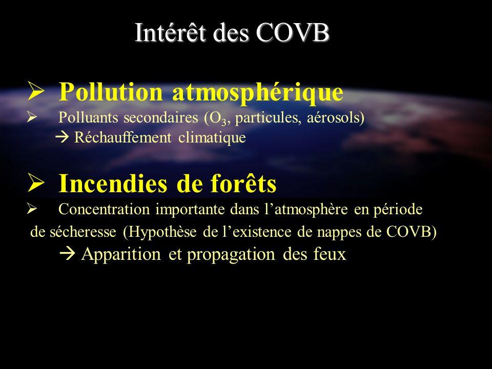 COVB : isoprène et monoterpènes (…) Composés à point flash très bas Facilement inflammables Observations : Effet boule de Feux (ou « flash over ») Brusque accélération et progression de lincendie (20km/h) Besoins de connaître les émissions des Composés Organiques Volatils (COV) par les végétaux.
