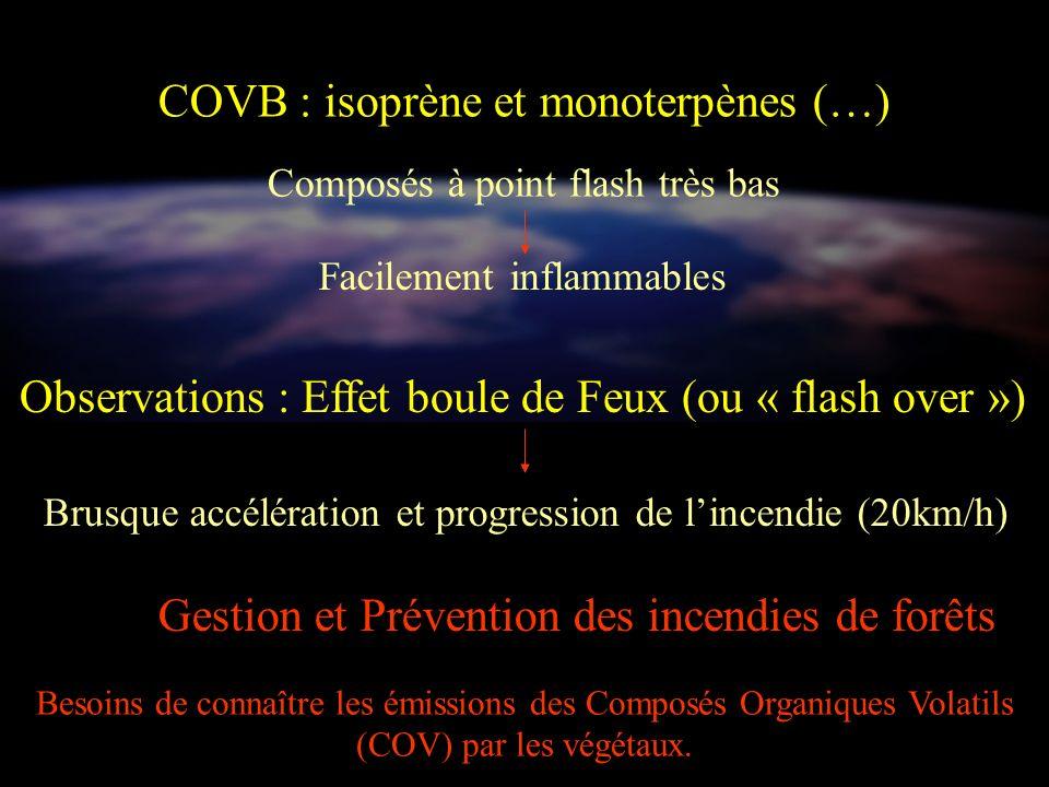 COVB : isoprène et monoterpènes (…) Composés à point flash très bas Facilement inflammables Observations : Effet boule de Feux (ou « flash over ») Bru