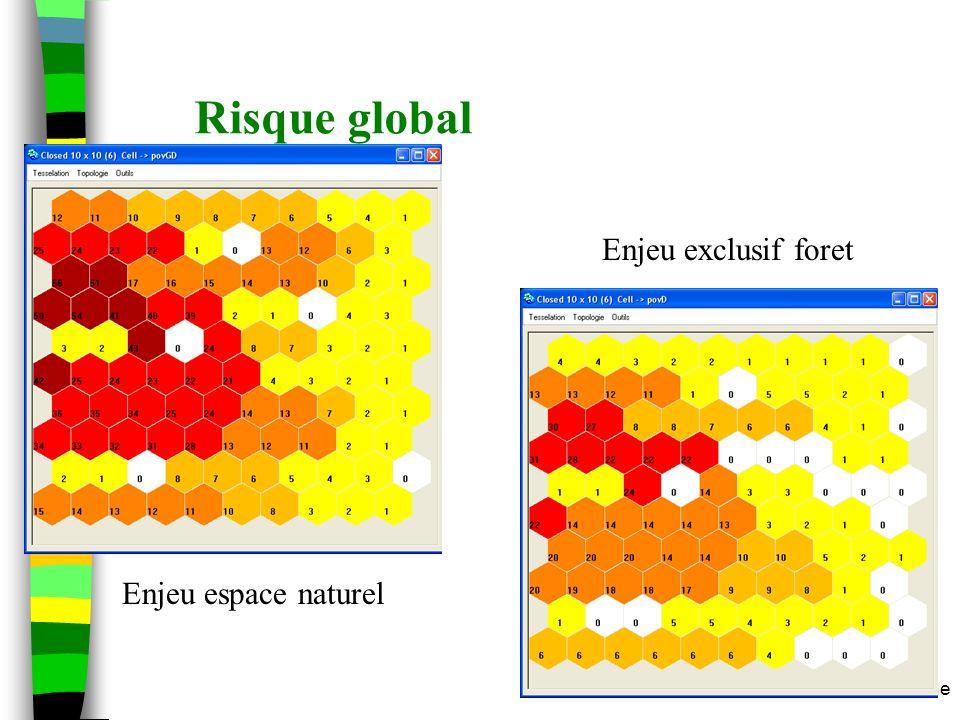 m.etienne Risque global Enjeu exclusif foret Enjeu espace naturel