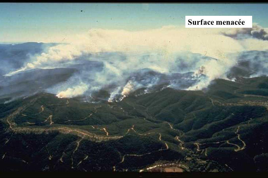 GIS Incendies de Forêt, Marseille, 4 décembre 2002, exposé 617 Surface menacée