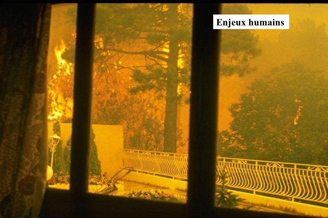 GIS Incendies de Forêt, Marseille, 4 décembre 2002, exposé 619 Enjeux humains