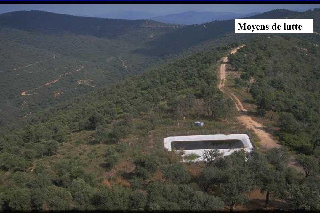 GIS Incendies de Forêt, Marseille, 4 décembre 2002, exposé 621 Moyens de lutte