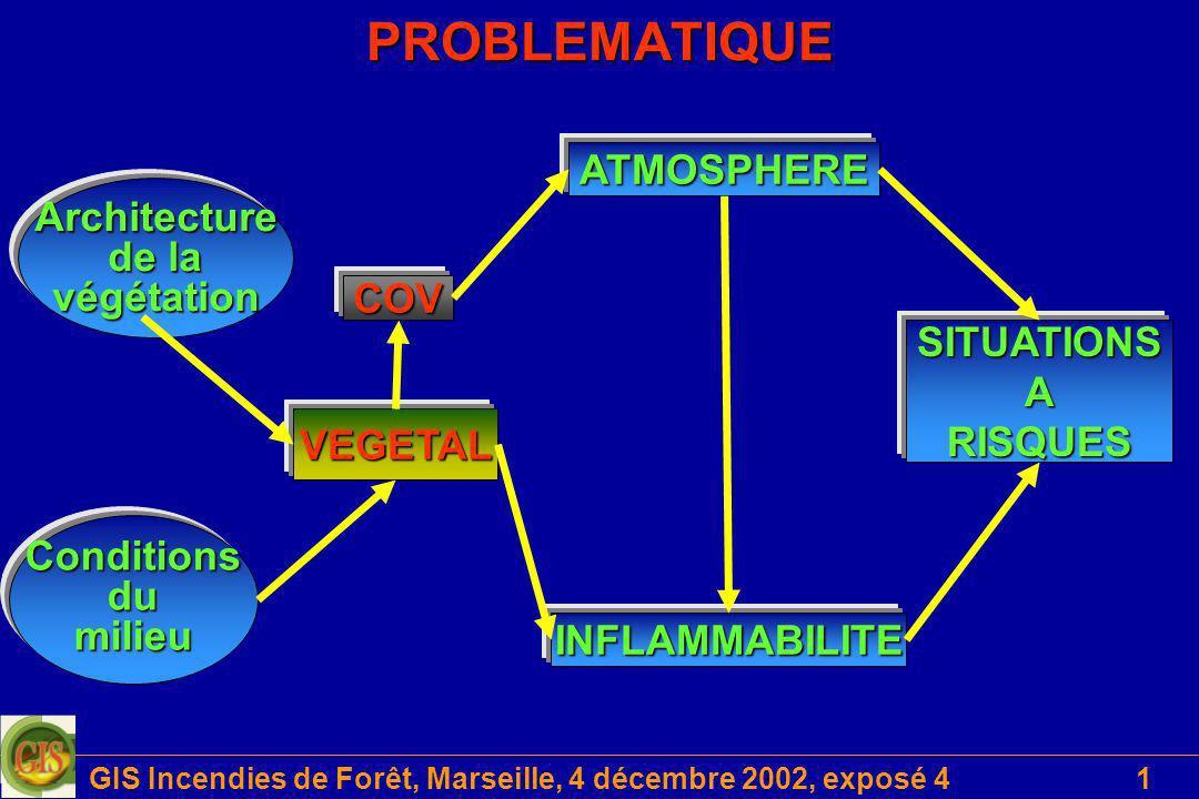 GIS Incendies de Forêt, Marseille, 4 décembre 2002, exposé 41 VEGETAL ATMOSPHERE INFLAMMABILITE Conditions du dumilieu Architecture de la végétation S