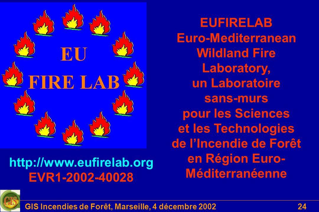 GIS Incendies de Forêt, Marseille, 4 décembre 200224 EUFIRELAB Euro-Mediterranean Wildland Fire Laboratory, un Laboratoire sans-murs pour les Sciences