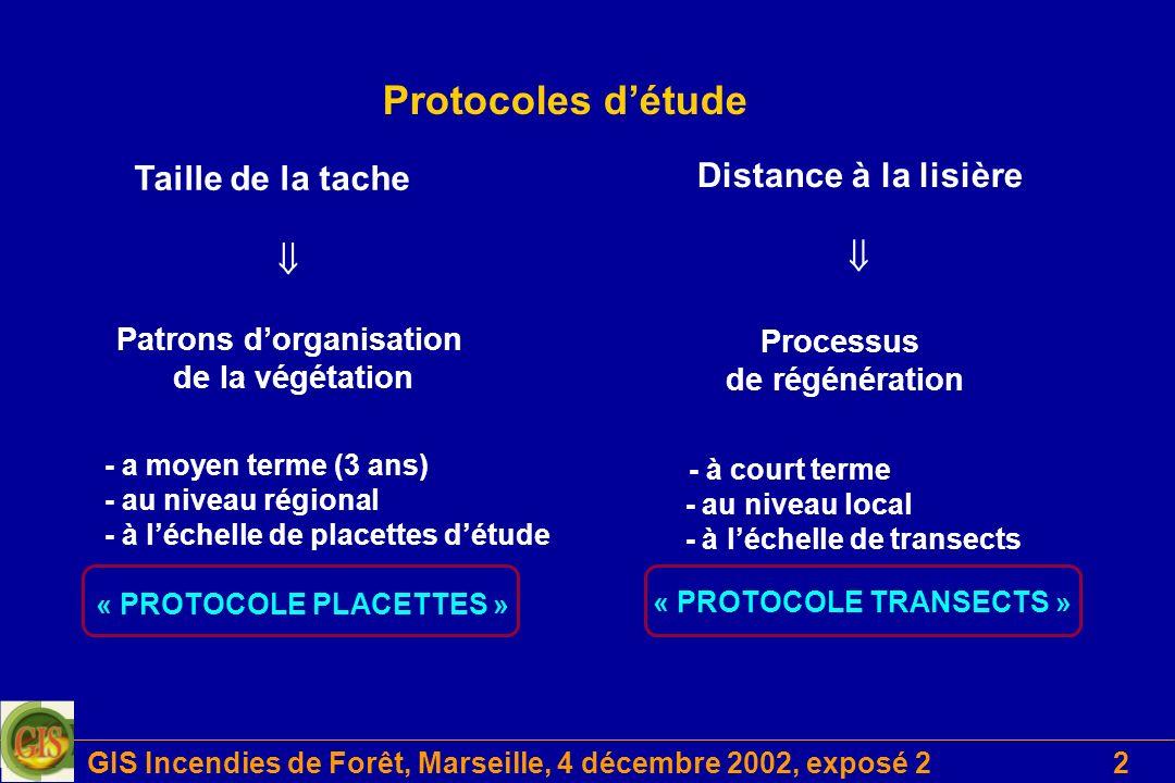 GIS Incendies de Forêt, Marseille, 4 décembre 2002, exposé 22 Protocoles détude Taille de la tache - a moyen terme (3 ans) - au niveau régional - à lé