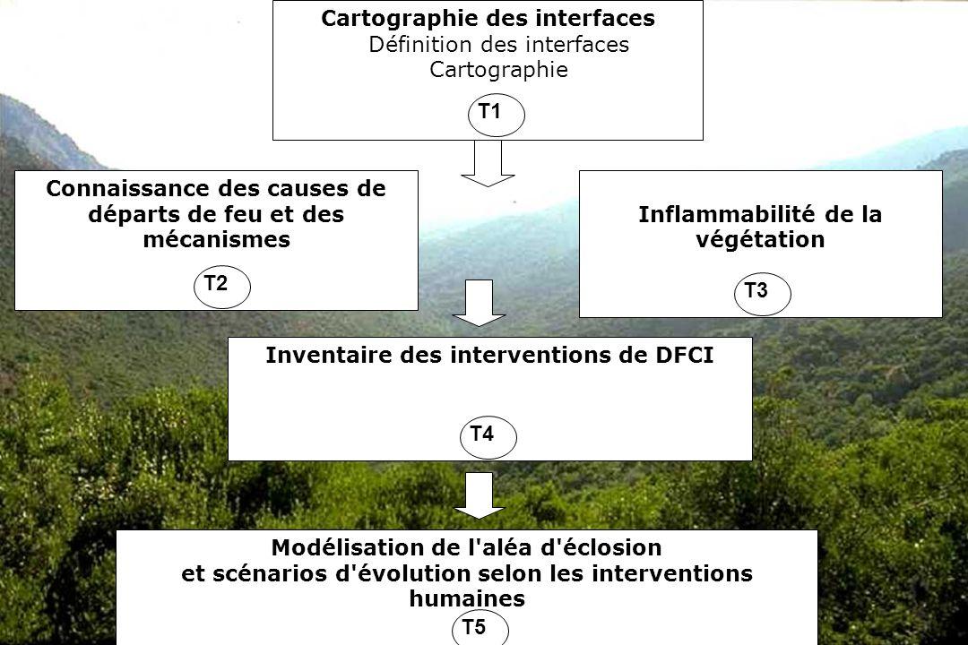 GIS Incendies de Forêt, Aix-en-Provence, 3 juin 20053 T1 - Cartographie des interfaces Objectif –caractérisation multiscalaire des différentes portions despace concernées par laléa Méthode –traitements télédétection, SIG Responsable : Cemagref Partenaires : IMEP État davancement: Une avancée méthodologique avec la caractérisation des interfaces habitat / forêt –Source de données : SPOT 5