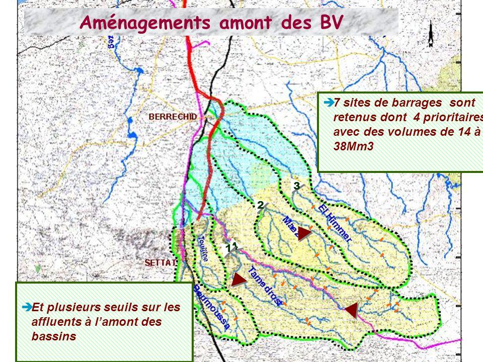 Aménagements amont des BV 7 sites de barrages sont retenus dont 4 prioritaires avec des volumes de 14 à 38Mm3 4 4 1 2 3 Et plusieurs seuils sur les affluents à lamont des bassins