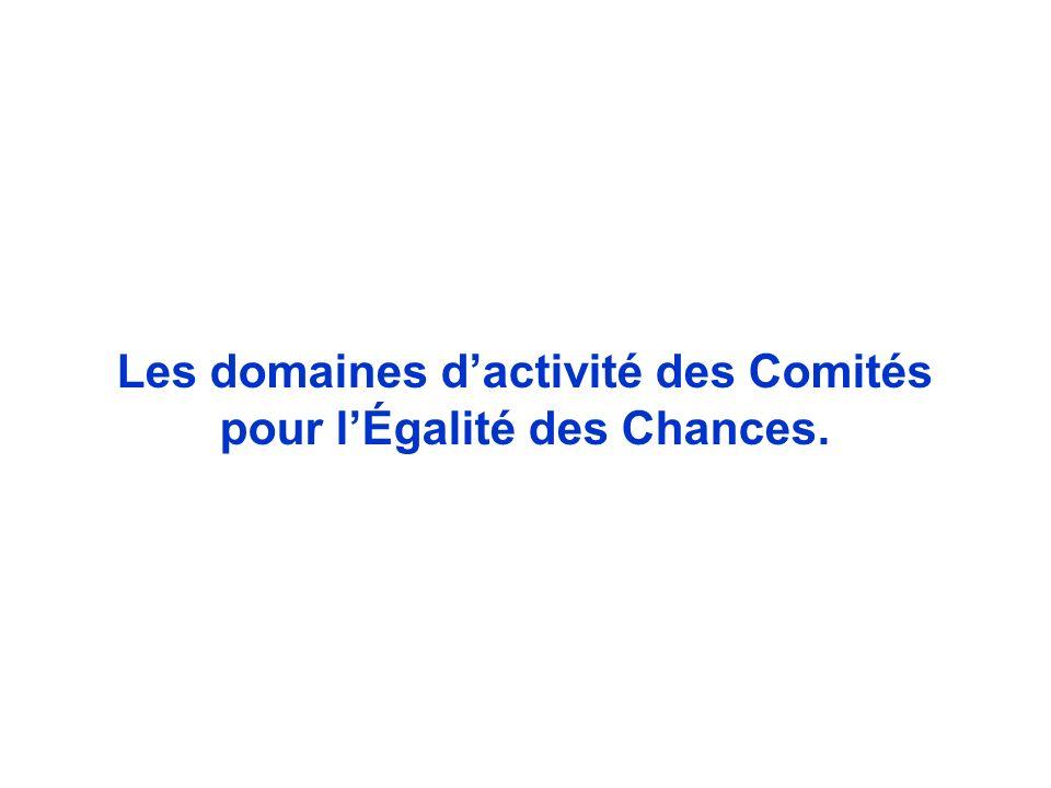 Les domaines dactivité des Comités pour lÉgalité des Chances.