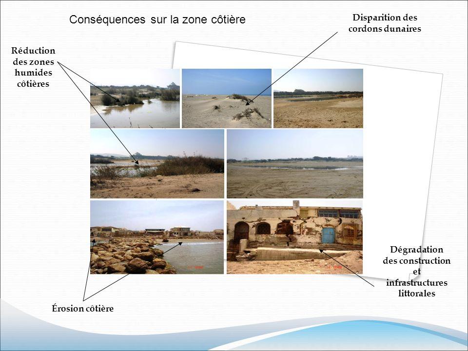 Conséquences sur la zone côtière Disparition des cordons dunaires Réduction des zones humides côtières Érosion côtière Dégradation des construction et