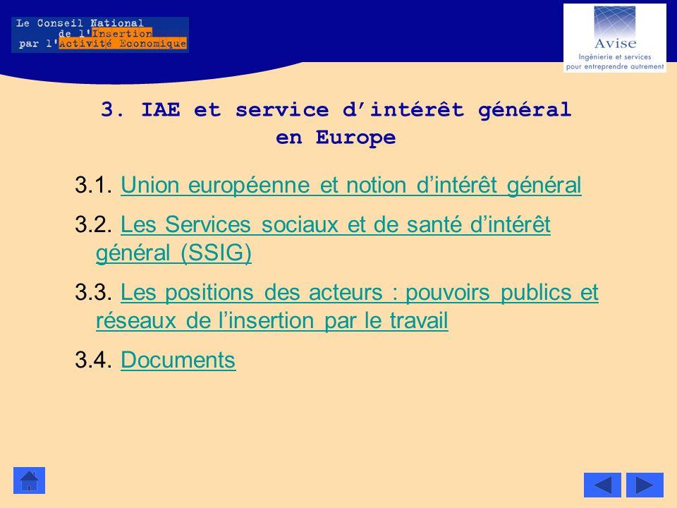 3. IAE et service dintérêt général en Europe 3.1. Union européenne et notion dintérêt généralUnion européenne et notion dintérêt général 3.2. Les Serv