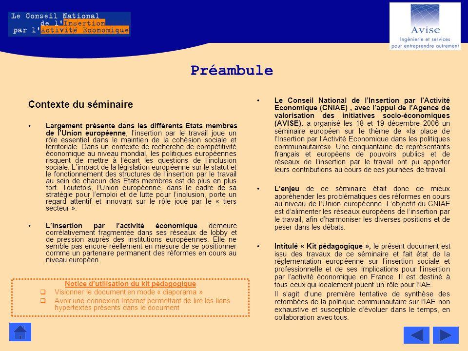 Préambule Contexte du séminaire Largement présente dans les différents Etats membres de lUnion européenne, linsertion par le travail joue un rôle esse