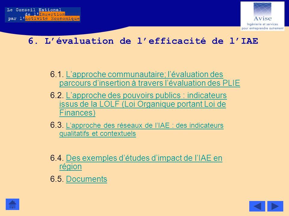 6. Lévaluation de lefficacité de lIAE 6.1. Lapproche communautaire; lévaluation des parcours dinsertion à travers lévaluation des PLIELapproche commun