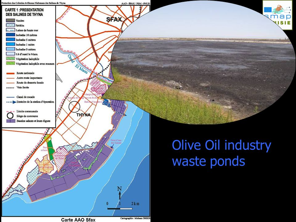 Olive Oil industry waste ponds