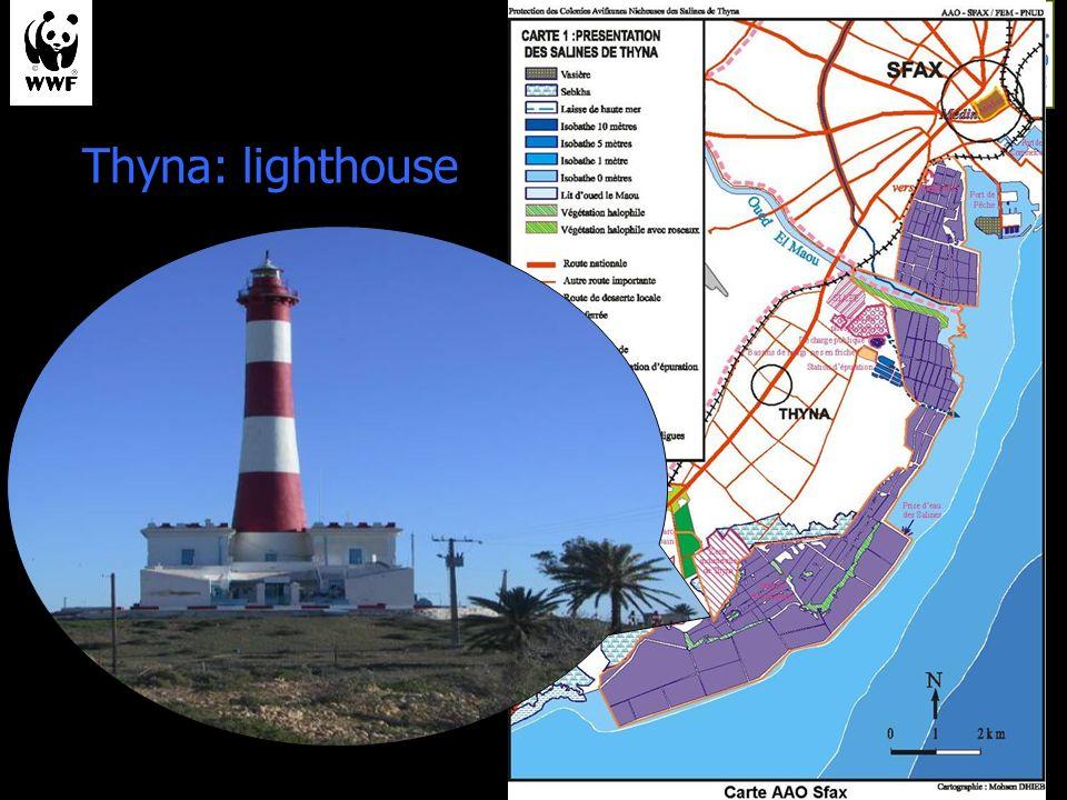 Thyna: lighthouse