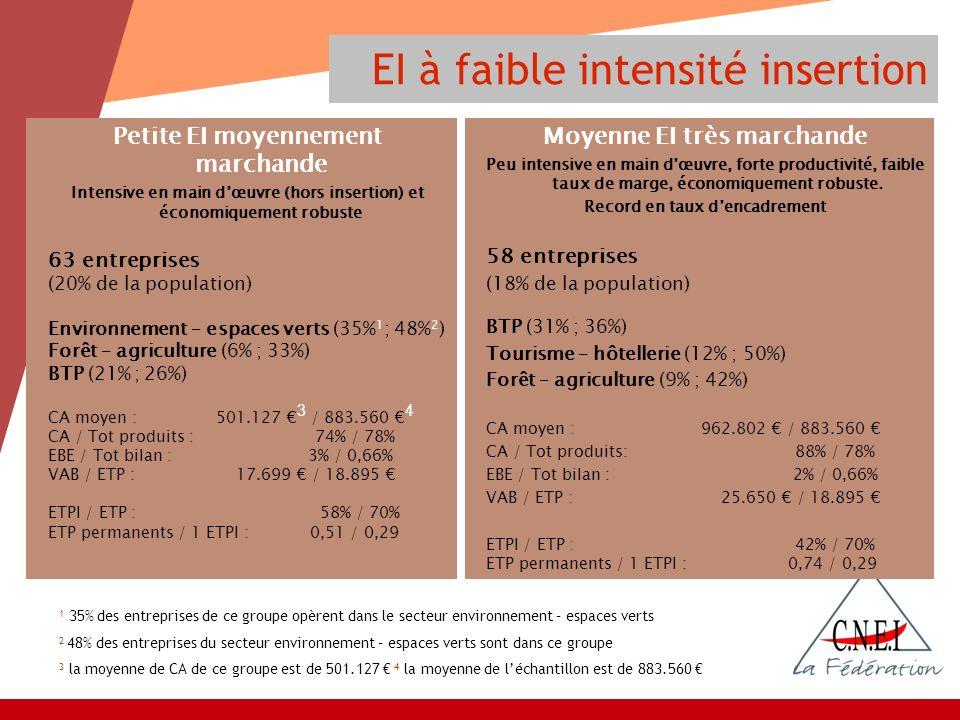 EI à faible intensité insertion Petite EI moyennement marchande Intensive en main dœuvre (hors insertion) et économiquement robuste 63 entreprises (20% de la population) Environnement – espaces verts (35% 1 ; 48% 2 ) Forêt – agriculture (6% ; 33%) BTP (21% ; 26%) CA moyen : 501.127 3 / 883.560 4 CA / Tot produits : 74% / 78% EBE / Tot bilan : 3% / 0,66% VAB / ETP : 17.699 / 18.895 ETPI / ETP : 58% / 70% ETP permanents / 1 ETPI :0,51 / 0,29 Moyenne EI très marchande Peu intensive en main dœuvre, forte productivité, faible taux de marge, économiquement robuste.