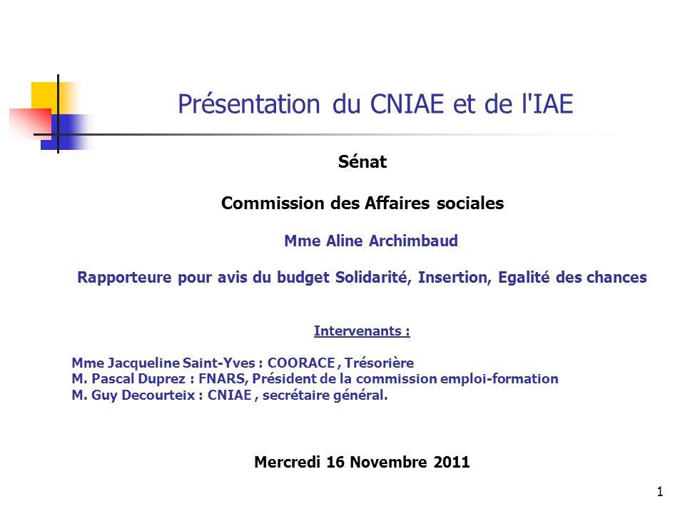 1 Présentation du CNIAE et de l'IAE Sénat Commission des Affaires sociales Mme Aline Archimbaud Rapporteure pour avis du budget Solidarité, Insertion,