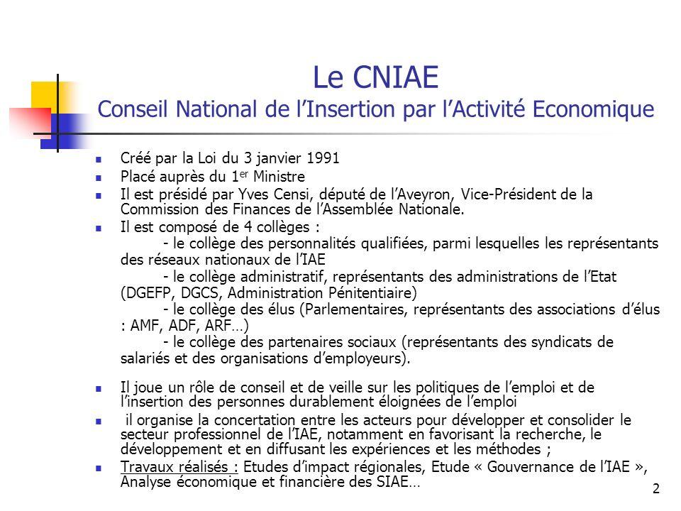 2 Le CNIAE Conseil National de lInsertion par lActivité Economique Créé par la Loi du 3 janvier 1991 Placé auprès du 1 er Ministre Il est présidé par