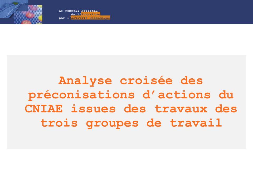 Analyse croisée des préconisations dactions du CNIAE issues des travaux des trois groupes de travail