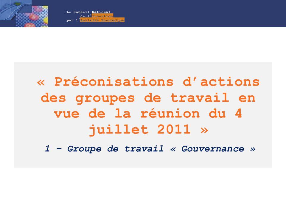 Prospective : le CNIAE et la gouvernance, pistes de travail (1/2) Dans la perspective dune plus grande équité entre les départements dans le soutien (financement,…) des SIAE par les financeurs sur lIAE : Solliciter lémergence de stratégies et de financements concertés et complémentaires (conférence de financeurs) sur le champ de lIAE (mission insertion, investissement, actions spécifiques), a minima lEtat (UT de la Direccte), le Conseil Général et le Conseil Régional (cf.