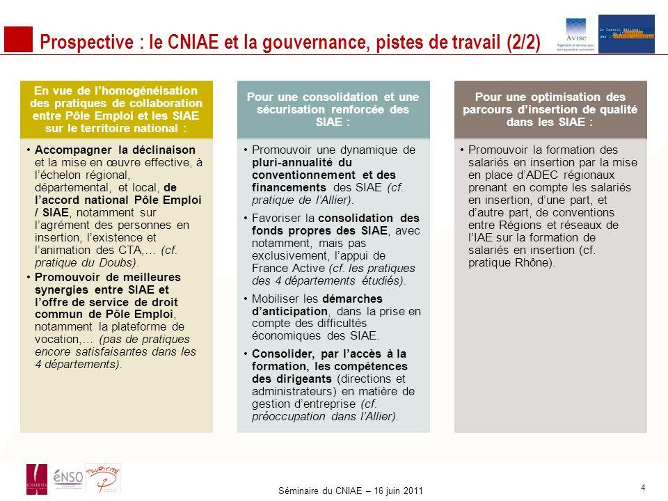 Prospective : le CNIAE et la gouvernance, pistes de travail (2/2) En vue de lhomogénéisation des pratiques de collaboration entre Pôle Emploi et les S