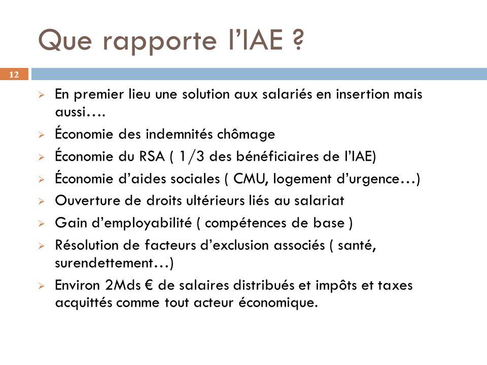12 Que rapporte lIAE .En premier lieu une solution aux salariés en insertion mais aussi….