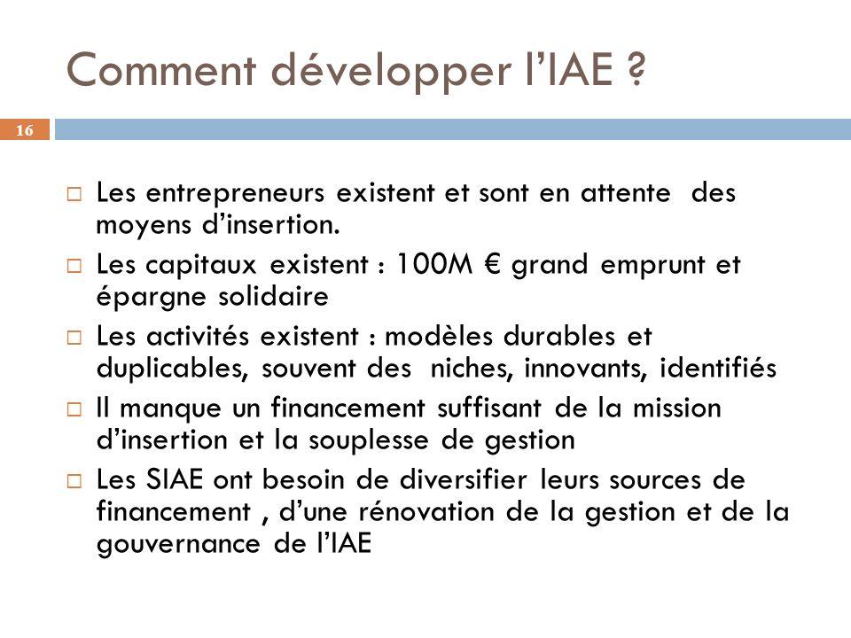 16 Comment développer lIAE .Les entrepreneurs existent et sont en attente des moyens dinsertion.