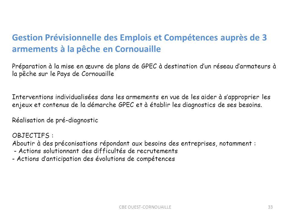 CBE OUEST-CORNOUAILLE33 Gestion Prévisionnelle des Emplois et Compétences auprès de 3 armements à la pêche en Cornouaille Préparation à la mise en œuvre de plans de GPEC à destination dun réseau darmateurs à la pêche sur le Pays de Cornouaille Interventions individualisées dans les armements en vue de les aider à sapproprier les enjeux et contenus de la démarche GPEC et à établir les diagnostics de ses besoins.