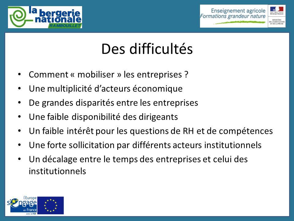 Des difficultés Comment « mobiliser » les entreprises ? Une multiplicité dacteurs économique De grandes disparités entre les entreprises Une faible di