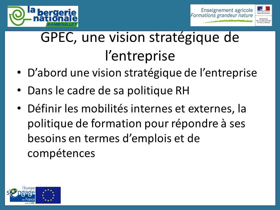 GPEC, une vision stratégique de lentreprise Dabord une vision stratégique de lentreprise Dans le cadre de sa politique RH Définir les mobilités intern