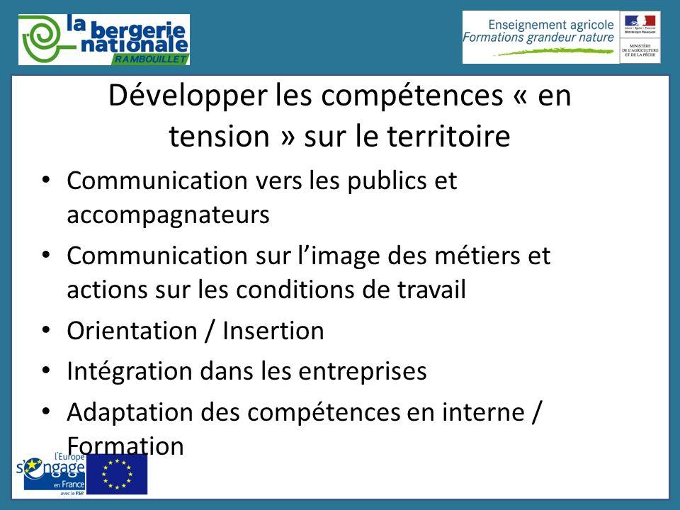 Développer les compétences « en tension » sur le territoire Communication vers les publics et accompagnateurs Communication sur limage des métiers et