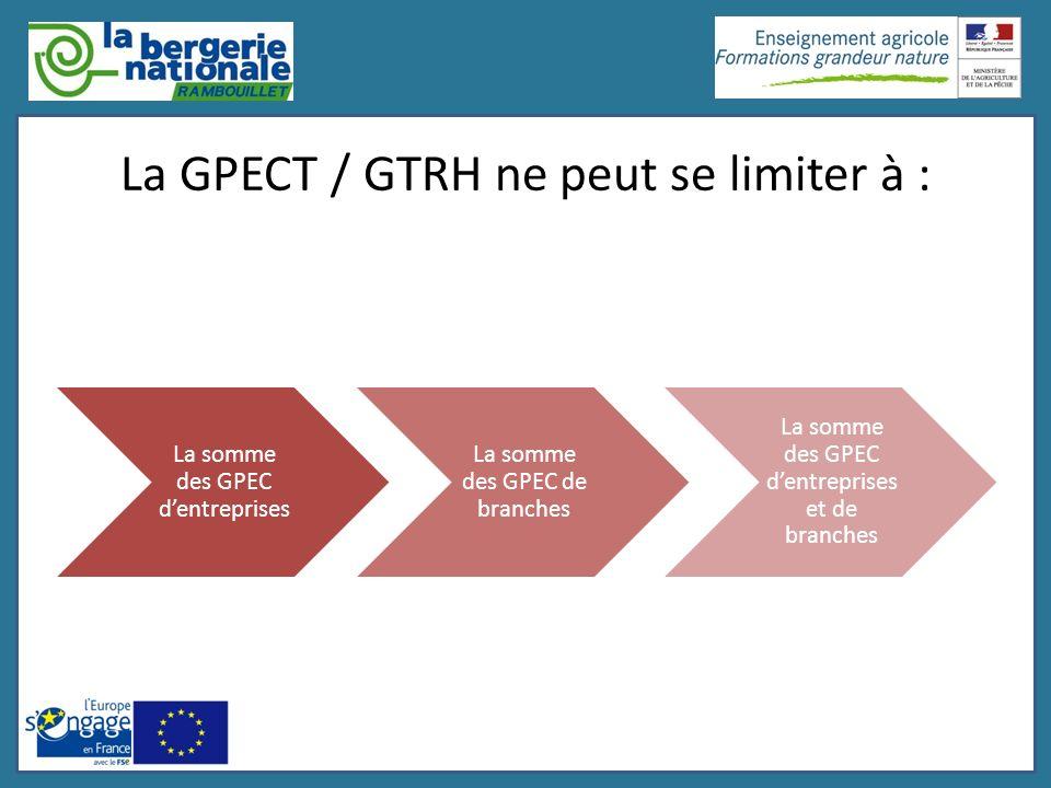 La GPECT / GTRH ne peut se limiter à : La somme des GPEC dentreprises La somme des GPEC de branches La somme des GPEC dentreprises et de branches