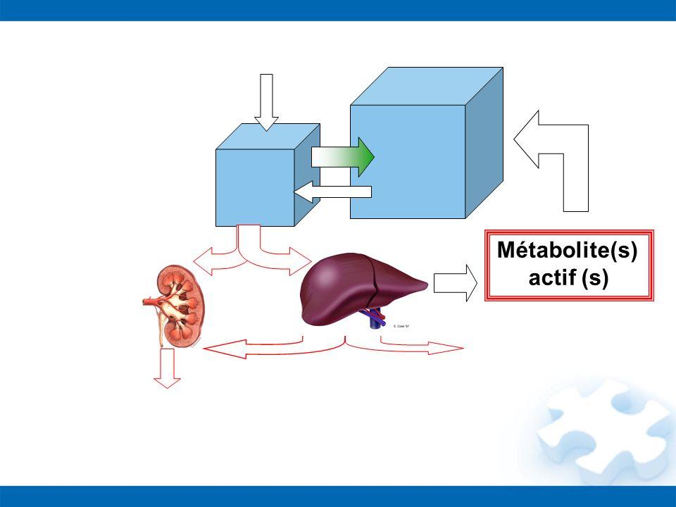 Métabolite(s) actif (s)