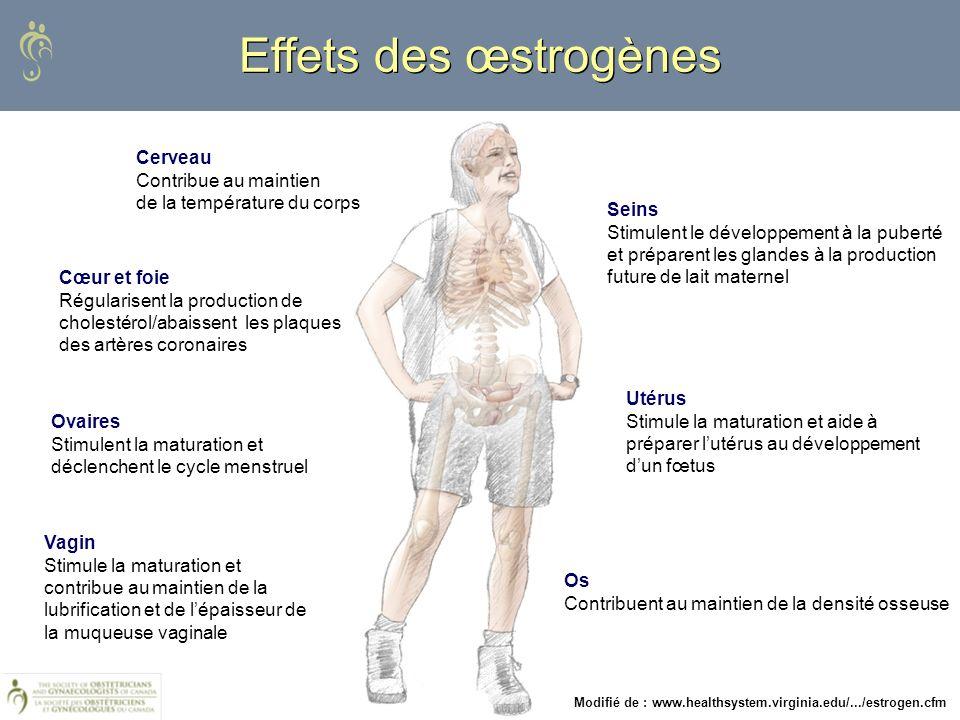 Modifié de : www.healthsystem.virginia.edu/.../estrogen.cfm Effets des œstrogènes Cerveau Contribue au maintien de la température du corps Cœur et foi