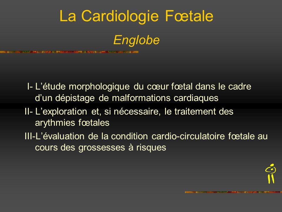 La Cardiologie Fœtale Englobe I- Létude morphologique du cœur fœtal dans le cadre dun dépistage de malformations cardiaques II- Lexploration et, si né