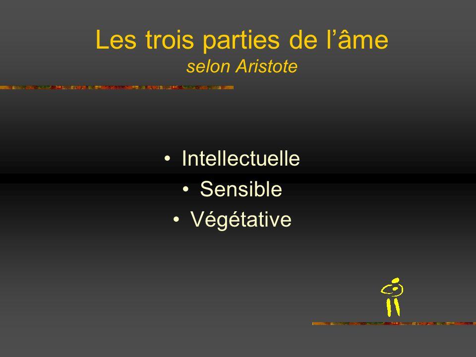 Les trois parties de lâme selon Aristote Intellectuelle Sensible Végétative