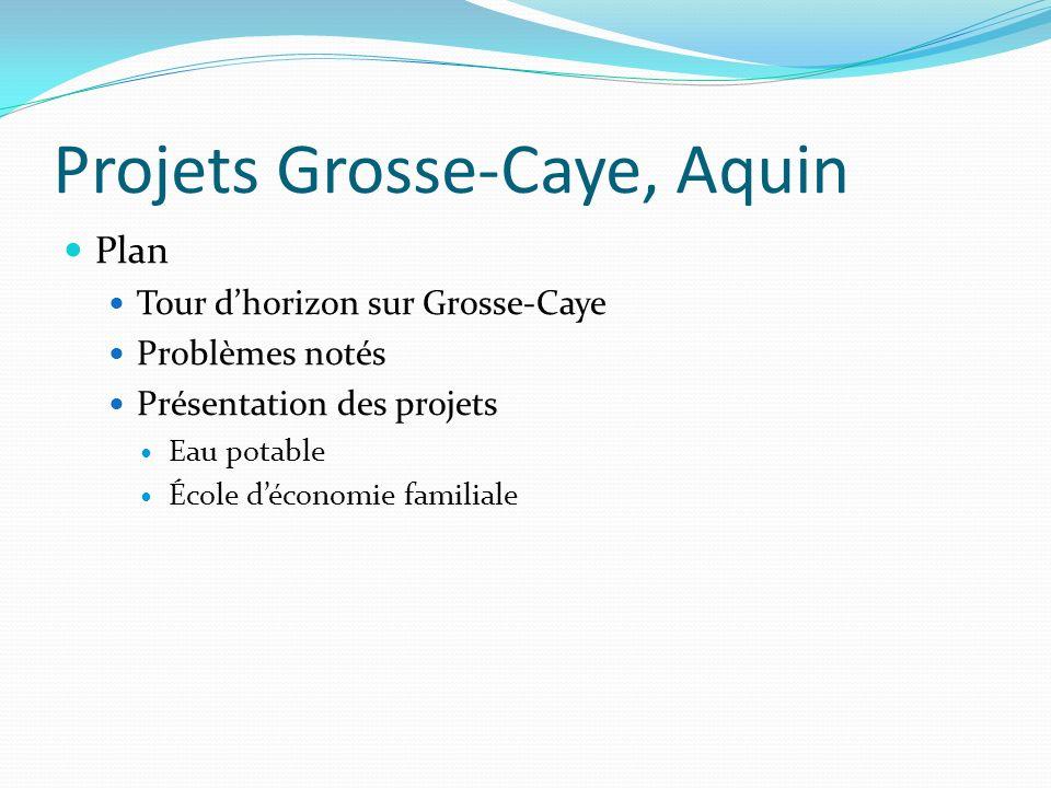 Projets Grosse-Caye, Aquin Plan Tour dhorizon sur Grosse-Caye Problèmes notés Présentation des projets Eau potable École déconomie familiale