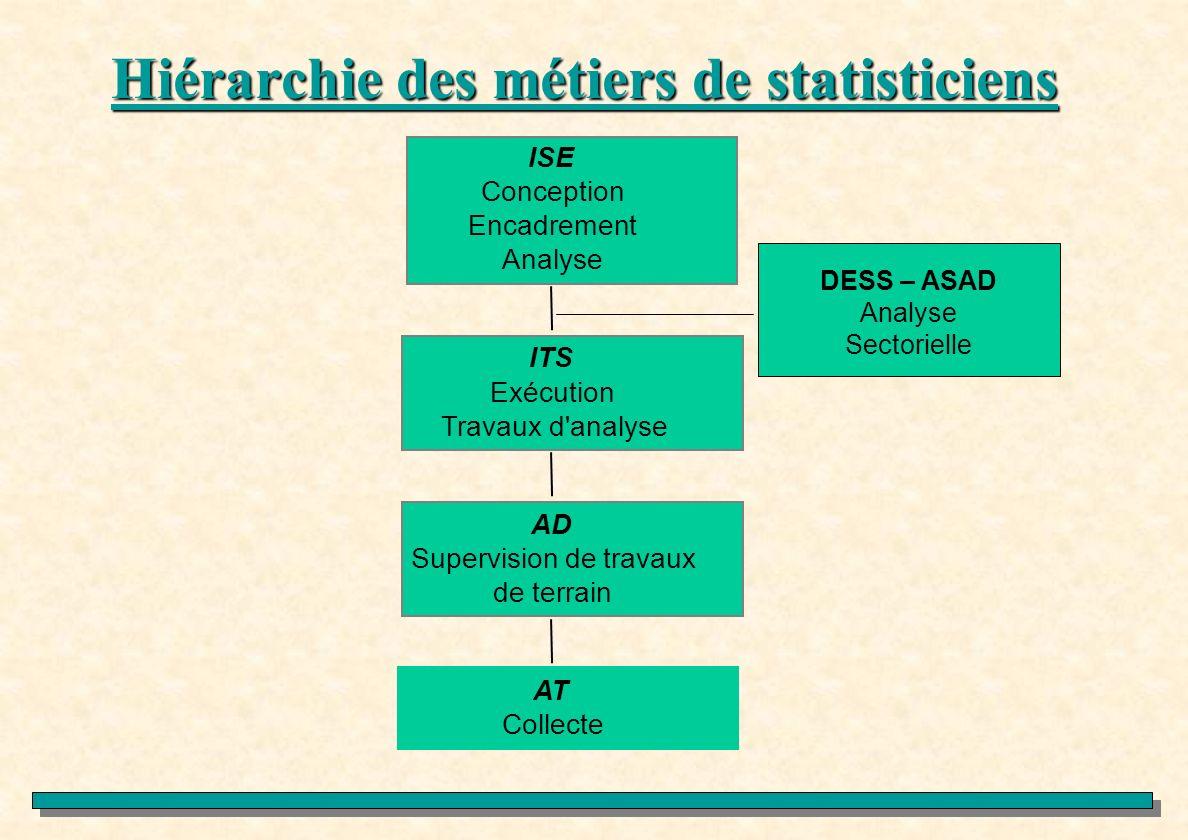 Hiérarchie des métiers de statisticiens DESS – ASAD Analyse Sectorielle AT Collecte AD Supervision de travaux de terrain ITS Exécution Travaux d'analy