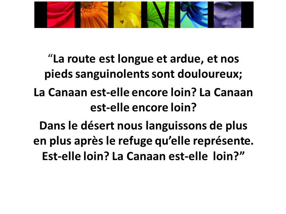 La route est longue et ardue, et nos pieds sanguinolents sont douloureux; La Canaan est-elle encore loin.