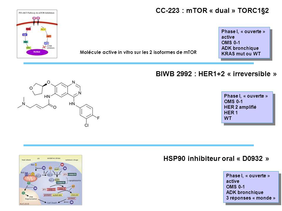 CC-223 : mTOR « dual » TORC1§2 Phase I, « ouverte » active OMS 0-1 ADK bronchique KRAS mut ou WT Phase I, « ouverte » active OMS 0-1 ADK bronchique KR