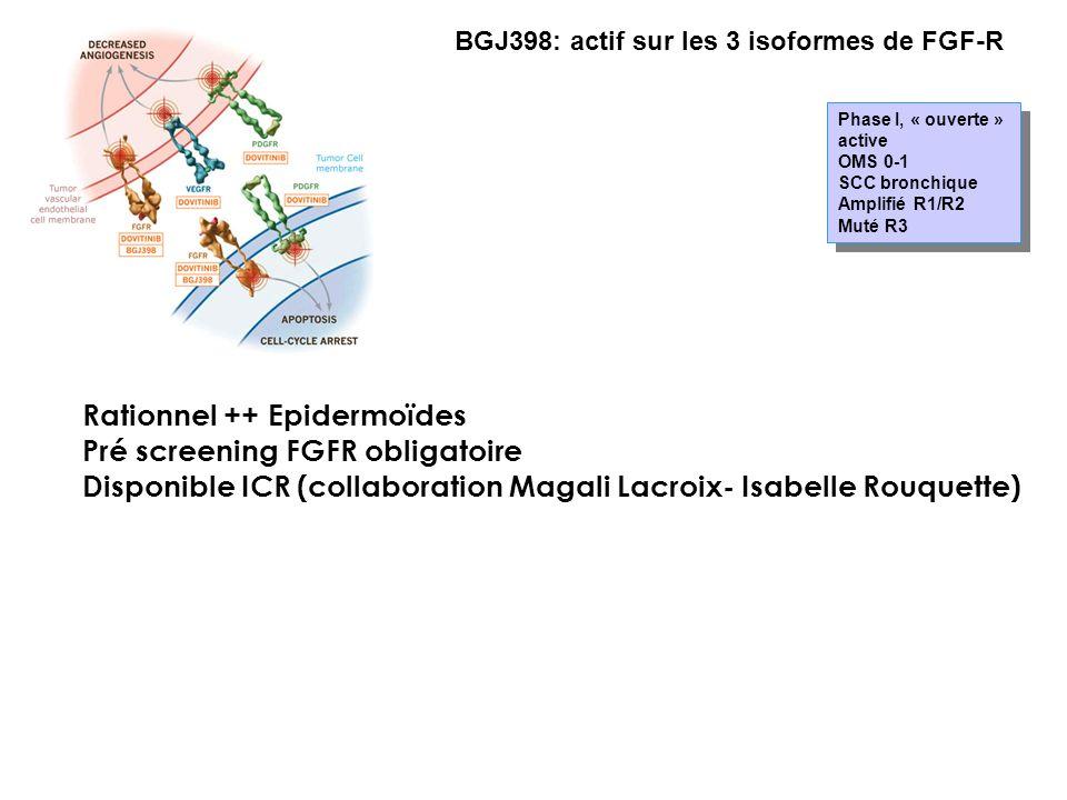 BGJ398: actif sur les 3 isoformes de FGF-R Phase I, « ouverte » active OMS 0-1 SCC bronchique Amplifié R1/R2 Muté R3 Phase I, « ouverte » active OMS 0