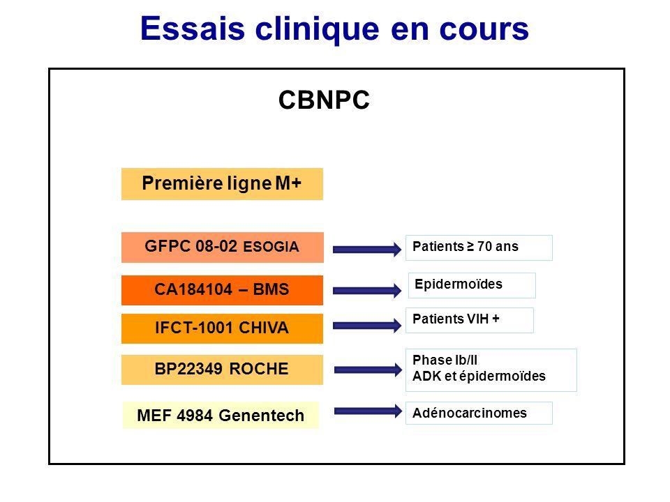 Essais clinique en cours CBNPC Première ligne M+ GFPC 08-02 ESOGIA CA184104 – BMS IFCT-1001 CHIVA BP22349 ROCHE Patients 70 ans Epidermoïdes Patients