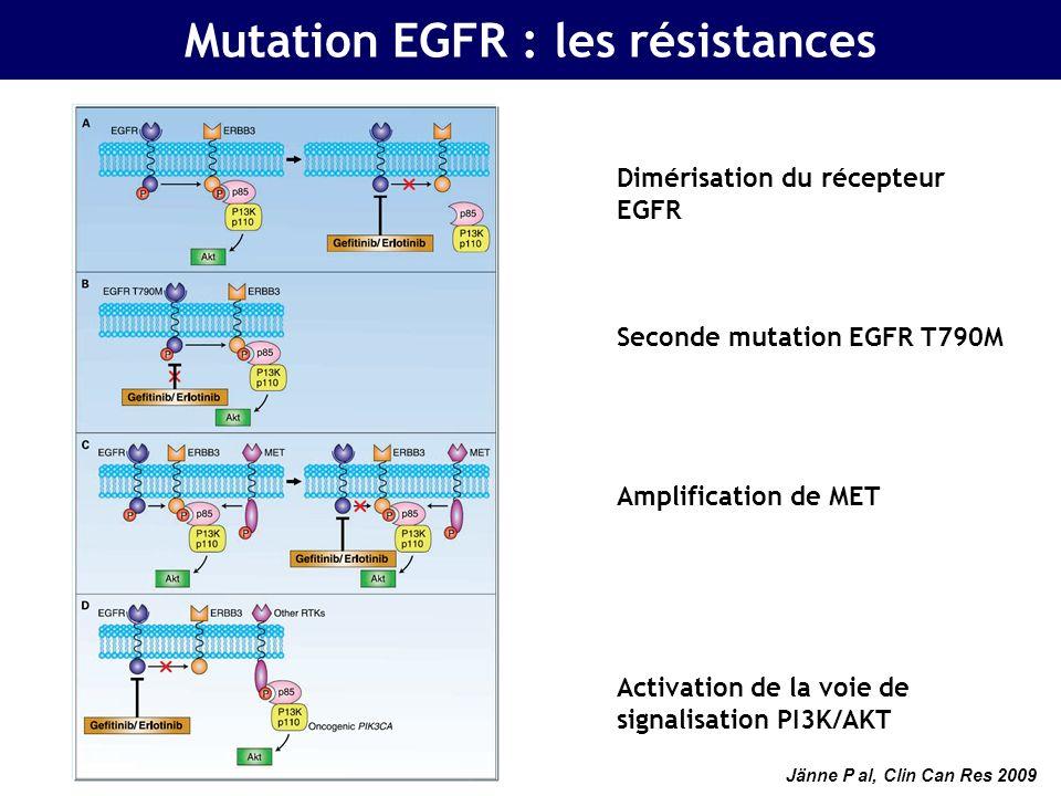 Mutation EGFR : les résistances Dimérisation du récepteur EGFR Seconde mutation EGFR T790M Amplification de MET Activation de la voie de signalisation PI3K/AKT