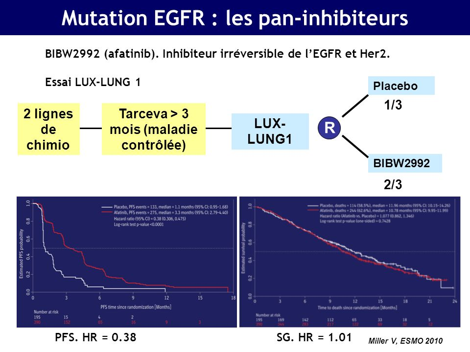 Janjigian, ASCO 2011 Mutation EGFR : les pan-inhibiteurs BIBW2992 (afatinib).