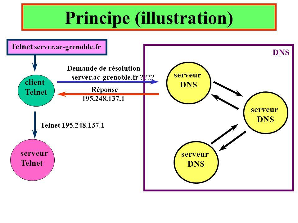 Principe (illustration) client Telnet serveur DNS serveur DNS serveur DNS Demande de résolution server.ac-grenoble.fr ???? Réponse 195.248.137.1 serve