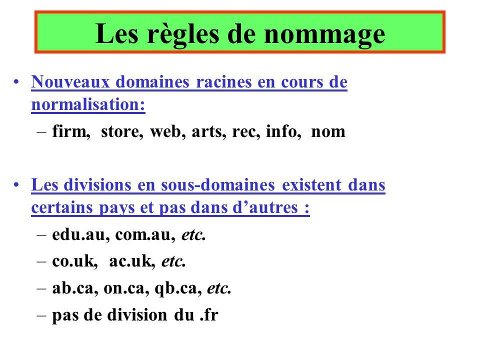 Nouveaux domaines racines en cours de normalisation: –firm, store, web, arts, rec, info, nom Les divisions en sous-domaines existent dans certains pay