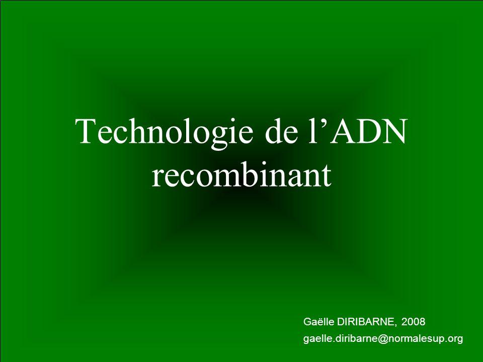 11 Technologie de lADN recombinant Gaëlle DIRIBARNE, 2008 gaelle.diribarne@normalesup.org